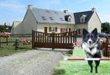 La Belle Vilaine - dog agility training and holidays